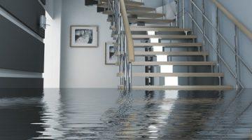 מה עושים אחרי הצפה בבית – המדריך המלא